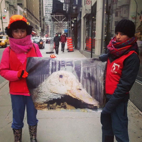 two people showing the posterof animal